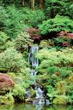 Jardin japonais Reproduction photographique par Erin Berzel