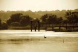Lagoon II Photographic Print by Alan Hausenflock