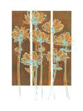 Flourish II Premium Giclee Print by Alexis Wynn