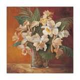 Tropic Beauty II Premium Giclee Print by Jillian Jeffrey