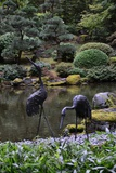 Japanese Gardens V Photographic Print by Brian Moore
