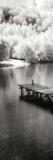 Mint Springs Lake Panel II Photographic Print by Alan Hausenflock