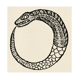 The Dragon Ouroboros, from La Magie Noire, France Giclée-tryk