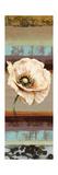 Elemental Poppy II Print by Selina Werbelow