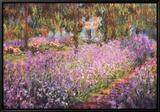 De tuin van Monet, Irissen Ingelijste canvasdruk van Claude Monet