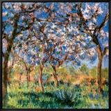 Spring in Giverny Leinwandtransfer mit Rahmung von Claude Monet
