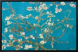 Rami di mandorlo in fiore, San Remy, 1890 circa Stampa su tela con cornice di Vincent van Gogh
