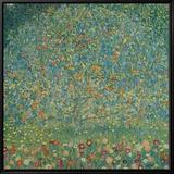 Apple Tree I, c.1912 Leinwandtransfer mit Rahmung von Gustav Klimt