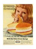 1960s UK Birds Eye Magazine Advertisement Giclee Print