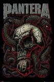 Pantera (Snake Eye) Prints