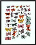 Vlinders, 1955 Schilderij van Andy Warhol