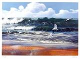 After the storm Sammlerdrucke von Uwe Werner