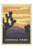 Joshua Tree National Park, California Poster von  Anderson Design Group