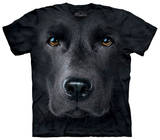 Youth: Black Lab Face Tshirts