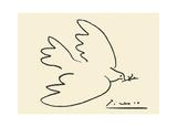 Colomba con fiori Stampa di Pablo Picasso