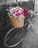 Basket of Flowers I Poster von Assaf Frank