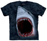 Youth: Shark Bite Tシャツ