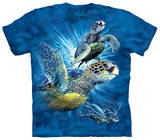 Youth: Find 9 Sea Turtles T-Shirts