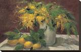 Mimosas y Limones Stretched Canvas Print by J. Ripoll