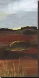 West Range Stretched Canvas Print by Leslie Bernsen