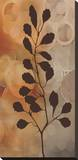 Flora I Stretched Canvas Print by Edward Aparicio