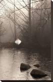 Silvered Morning Pond Sträckt kanvastryck av Heather Ross