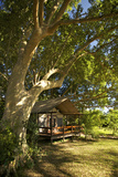 A Tent At the Lugenda Wilderness Camp in the Niassa Reserve Reproduction photographique par Jad Davenport