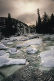 Early Morning Upstream View of the Roaring Fork River Photographic Print by David Hiser