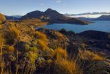 Dawn Light Strikes Grasslands and a Beach Along Lago San Martin Reproduction photographique par Beth Wald