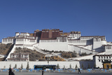 A View of the Potala Palace Photographic Print by Kent Kobersteen