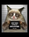 Grumpy Cat Mugshot Humor Poster Pósters