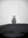 Veni, Vidi, Vici Posters af Lee Frost