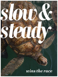 Slow and Steady Arte por Lisa S. Engelbrecht
