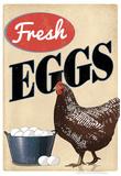 Fresh Eggs Chicken Hen Art Print Poster Poster
