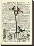 Garden Fork & Birds Stretched Canvas Print by Marion Mcconaghie