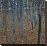 Beech Grove I, 1902 キャンバスプリント : グスタフ・クリムト