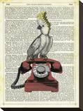 Cocatoo on Telephone Toile tendue sur châssis par Marion Mcconaghie