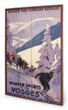Winter sports in the Vosges Treskilt