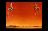 The Elephants, c.1948 Prints by Salvador Dalí