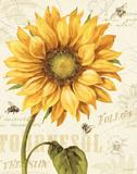 Under the Sun I Kunstdrucke von Lisa Audit
