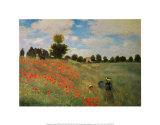 Wild Poppies Plakater av Claude Monet