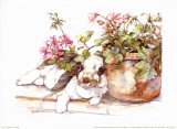 Geraniums Jubilee Prints by Jodi Jensen
