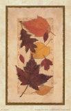 Autumn Harvest I Prints by Deni Michelle Newey