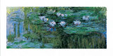 Waterlilies Plakater af Claude Monet
