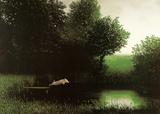 Cerdo nadador Arte por Michael Sowa