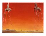 Les éléphants, 1948 Poster par Salvador Dalí