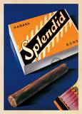 Splendid Habana ポスター : フレッド・ノイコム