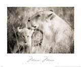 Masai Mara II Arte por Lorne Resnick