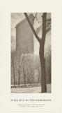 Flatiron-bygningen Plakat av Alfred Stieglitz