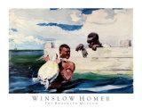 Schildkrötengehege Poster von Winslow Homer